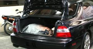carro-remover