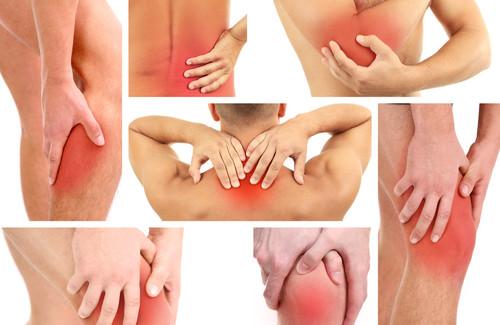 A razão da dor: como a coluna está ligada a outros órgãos