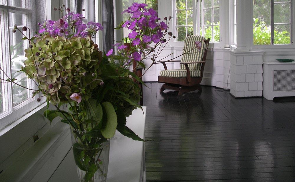 Estas plantas são bombas de oxigênio: tenha pelo menos uma delas para purificar o ar de sua casa