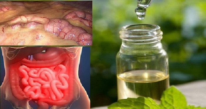 Remova todas as toxinas do corpo em poucos dias: um método que previne o câncer e elimina a gordura e a retenção de líquido