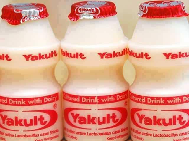 Faça 1 litro de Yakult caseiro com apenas 4 Ingredientes!