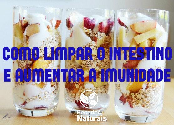 Como limpar o intestino de forma 100% natural e aumentar a imunidade com isso