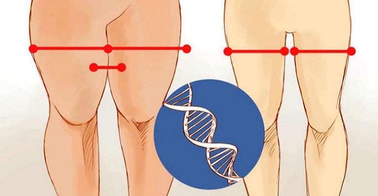 5 truques para perder 2 cm de gordura nas coxas em menos de 15 dias