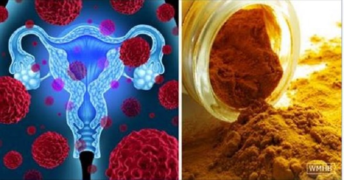 Melhor proteção contra o câncer