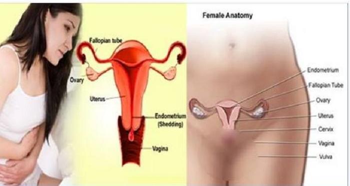 Receitas Naturais Para Cólica Menstrual