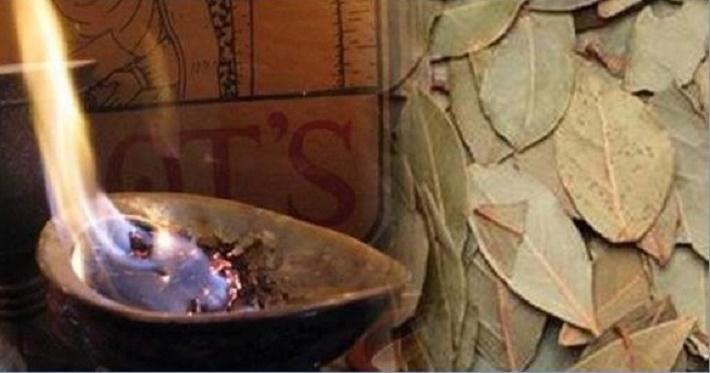 Ela queima e cheira a fumaça das folhas de louro – quando souber por quê, você vai fazer o mesmo!