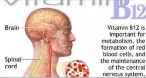 vitamina_b12_