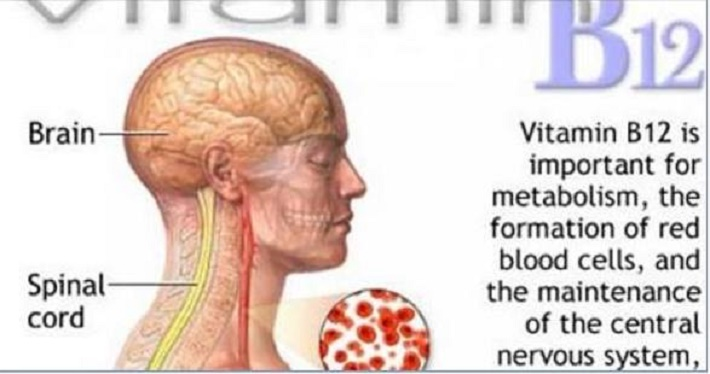 7 sinais de deficiência de vitamina B12