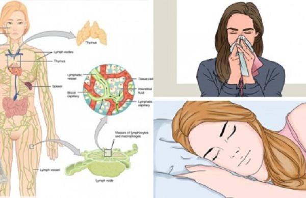 8 dicas que vão fortalecer sua imunidade e proteger você da gripe e outras viroses