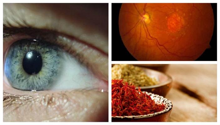 Cientistas descobrem tratamento natural para a perda da visão pela idade