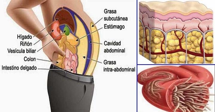 Chá seca-barriga: 3 ingredientes para você afinar a cintura e ainda limpar as artérias