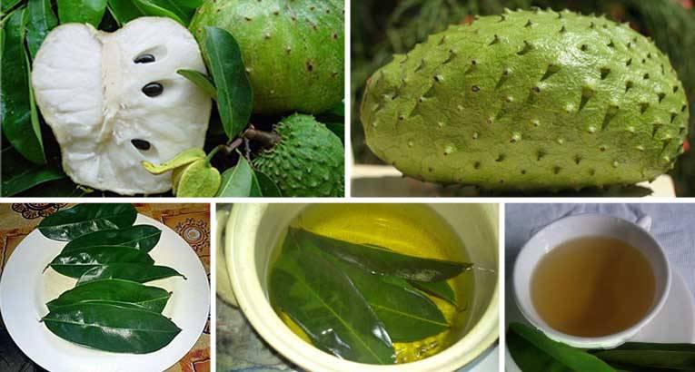 Chá é milagroso e pode curar diversas doenças, inclusive câncer e diabetes