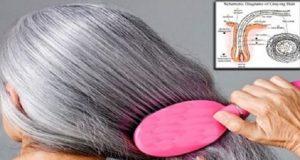 cabelos_brancos_-_escurecer_sem_tintura_ed