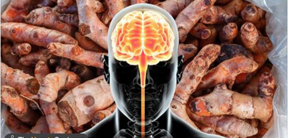 6 plantas que combatem inflamações e protegem o cérebro contra Alzheimer e Parkinson