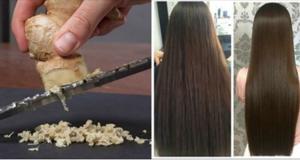 gengibre_-_cabelo