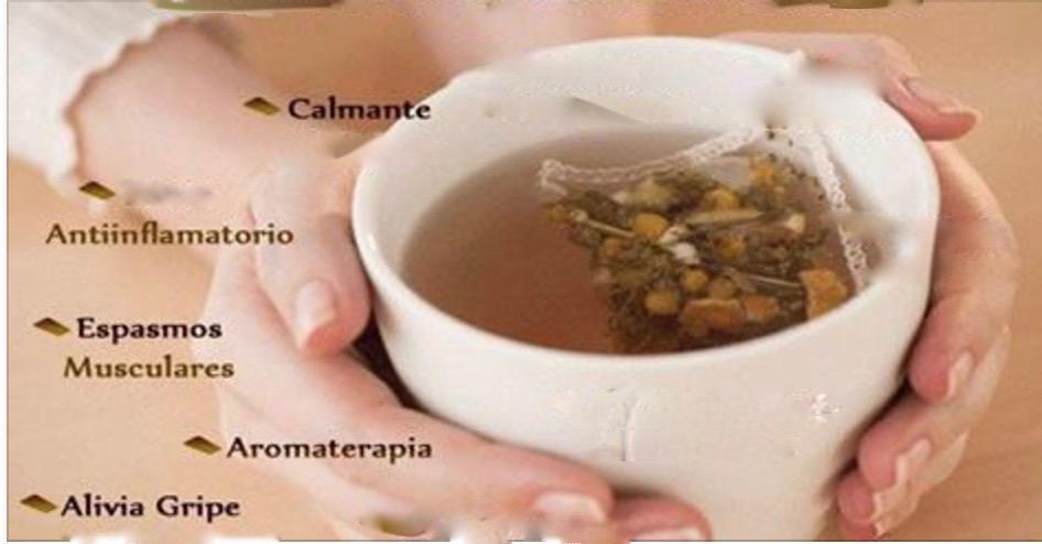Você realmente conhece os beneficios do chá de camomila?  Esta informação vai surpreender você!