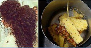 abacaxi_-_cabelos