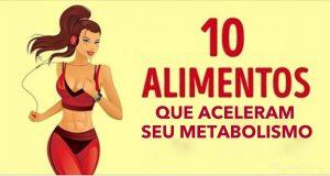 alimentos_-_metabolismo