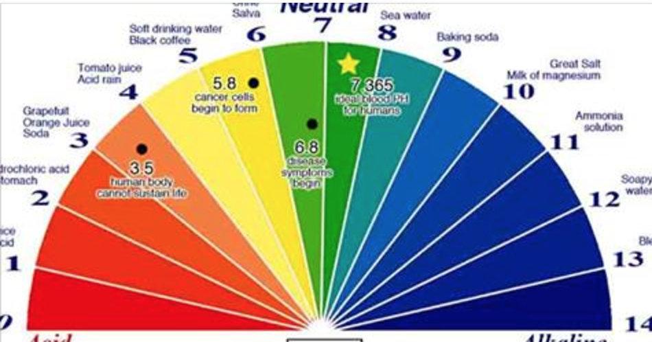 Ácido ou alcalino: aqui está a maneira mais fácil de descobrir o pH do seu corpo