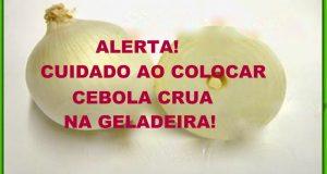 cebola_-_geladeira