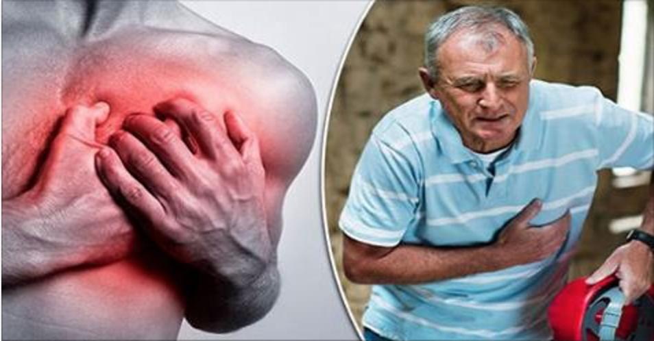 O segredo revelado há quase mil anos para desentupir artérias e combater doenças do coração