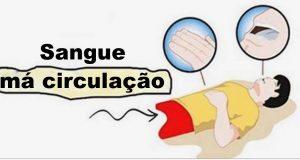 sangue_-_circulacao