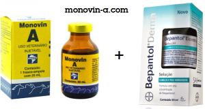 shampoo-monovin
