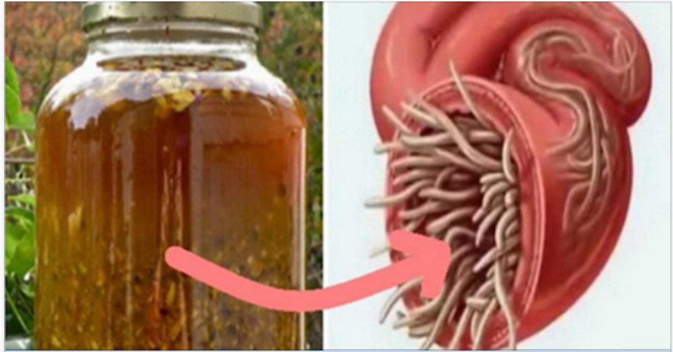 O mais poderoso tônico natural – eleva a imunidade e destrói vírus, fungos e vermes