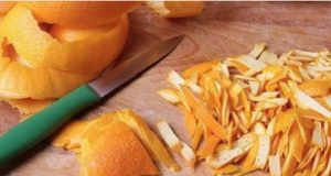 vitamina_c_-_casca_de_laranja