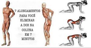7_alongamentos_-_coluna