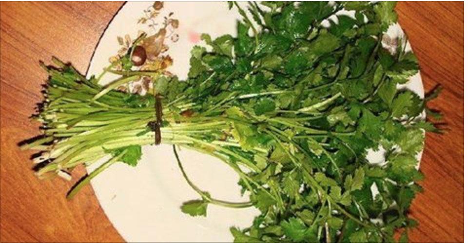 A erva que é esquecida – cura rins, pâncreas, intestino, fígado e é excelente para as mulheres