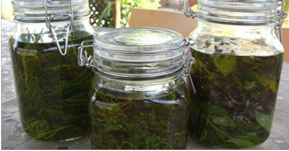Álcool medicinal de ervas – o segredo da vovó para tratar artrite, reumatismo, dor nas costas e joelhos