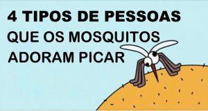 mosquitos_-_pessoas