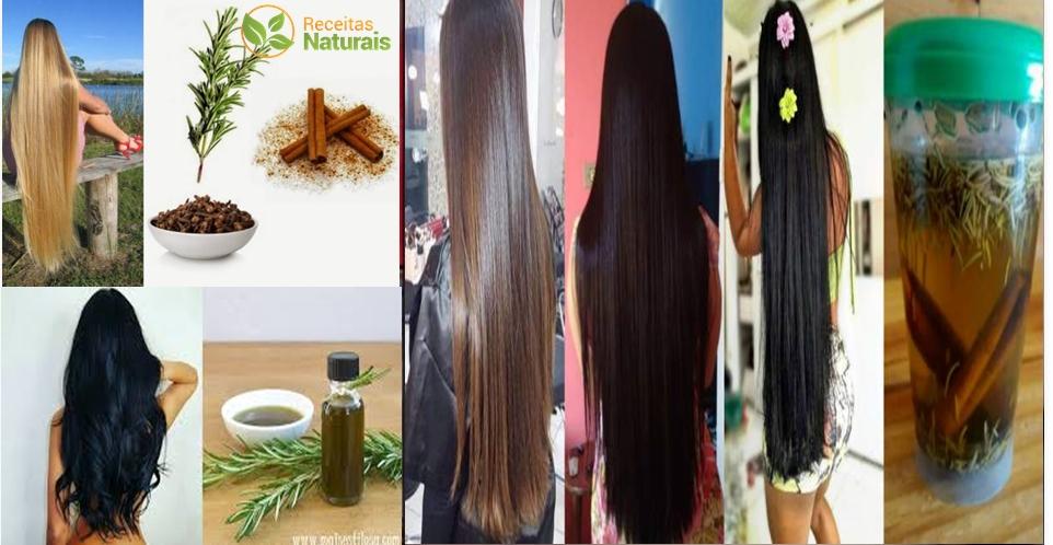 shampoo-alecrim-receitas-naturais