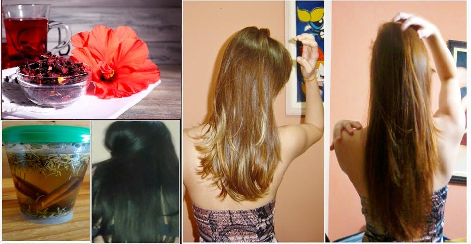 shampoo-receitas-naturais