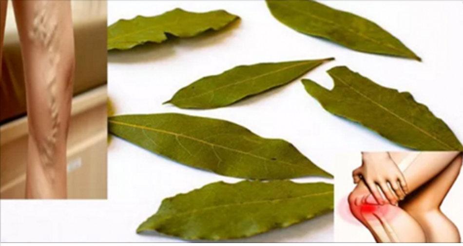 Elimine dor de cabeça, enxaqueca e dores nas articulações com o óleo desta planta!