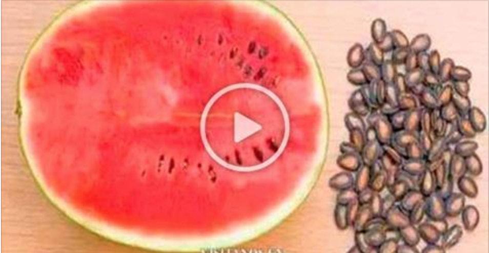 Ferva as sementes de melancia desta forma e em pouco tempo seu corpo terá estes benefícios!
