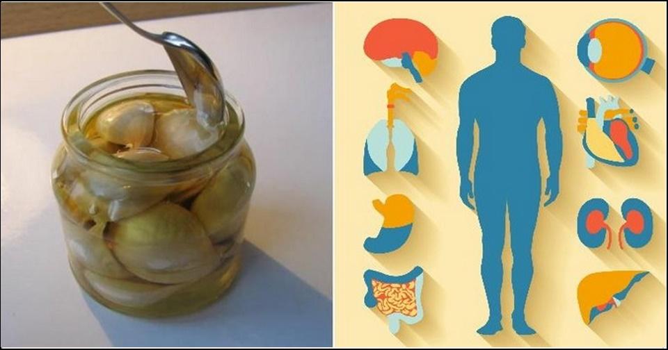 Coma essa receita de alho e mel por 7 dias e você ficará surpresa com os resultados
