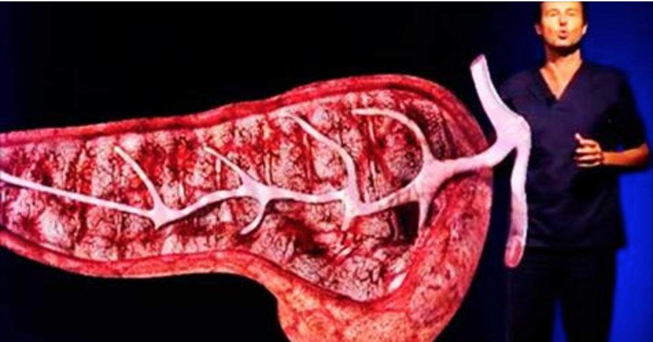 Estas são as 6 coisas que estão destruindo seu fígado mesmo sem você beber álcool!