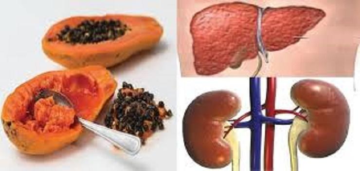 Como desintoxicar rins e fígado com sementes de mamão