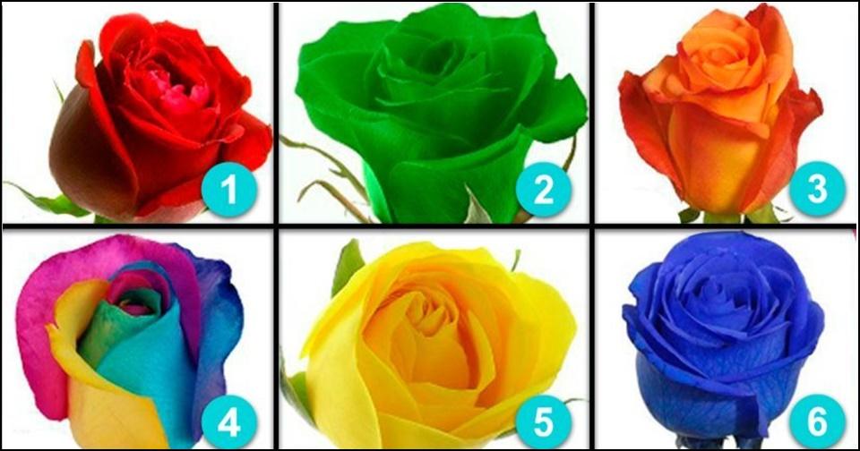 Escolha a rosa que mais te agrada e segredos sobre a sua personalidade serão revelados
