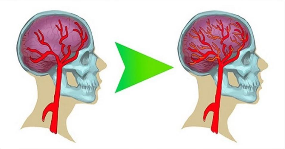 5 maneiras de aumentar naturalmente a serotonina no seu cérebro