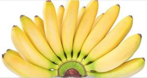 banana_-_novo_ag