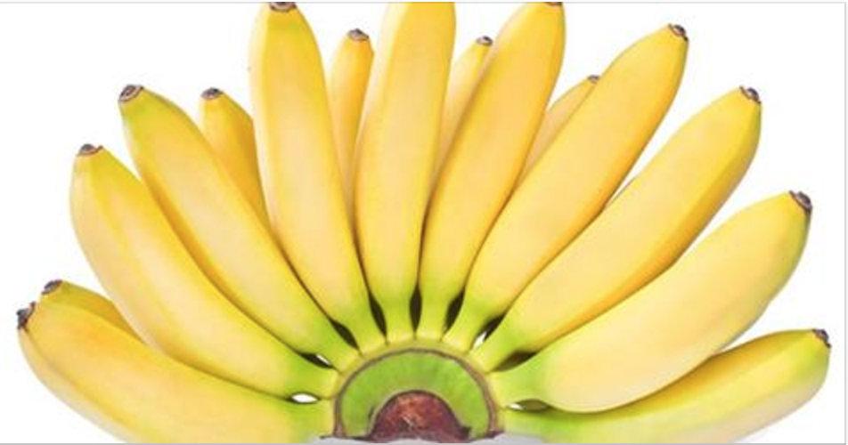 Se você é fã da banana, leia estes fatos sobre ela – o número 5 é muito interessante e poucas pessoas sabem!