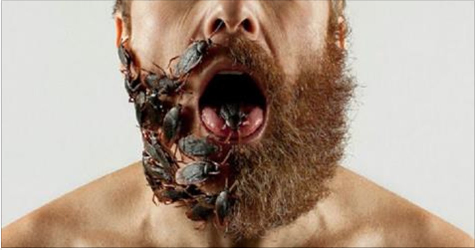Cientistas provam que uma barba tem a mesma quantidade de bactérias que um vaso sanitário – saiba como se proteger!