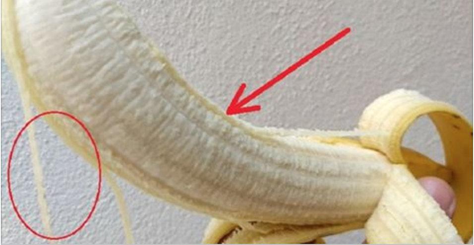 floema_-_banana