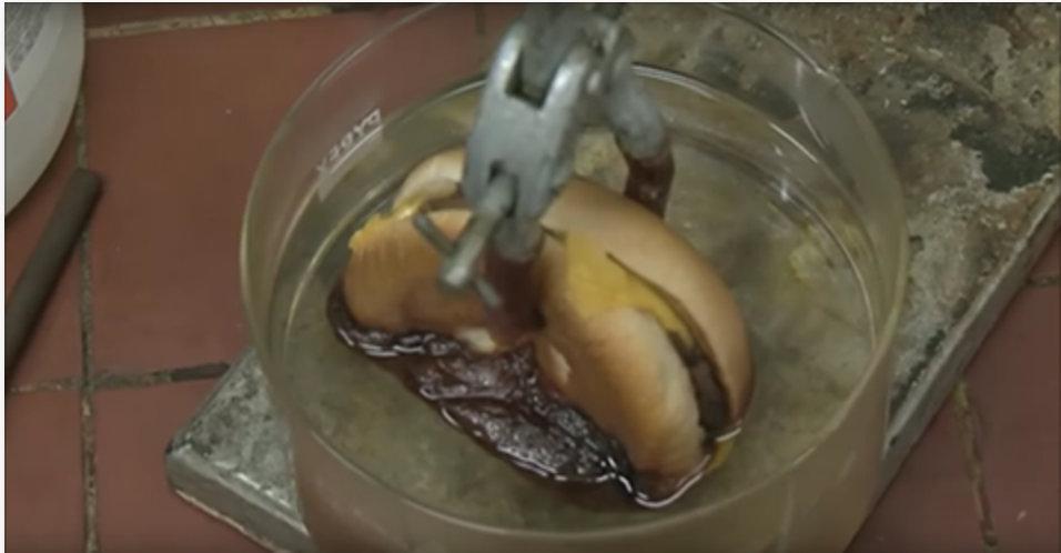 Esta experiência chocou milhões de fãs do McDonald's – você nunca mais vai querer comer um sanduíche desses!