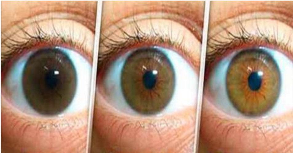 Ciência confirma: este é o melhor tratamento natural para recuperar a visão e proteger seus olhos de doenças como catarata e glaucoma!