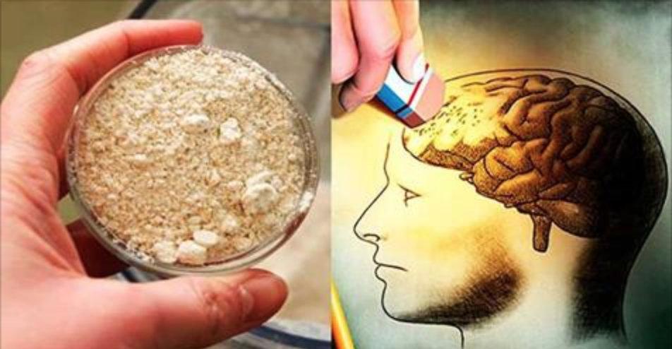 Este é o remédio natural que vai recuperar sua memória e impedir o envelhecimento precoce do cérebro – rápido, barato e realmente eficaz!