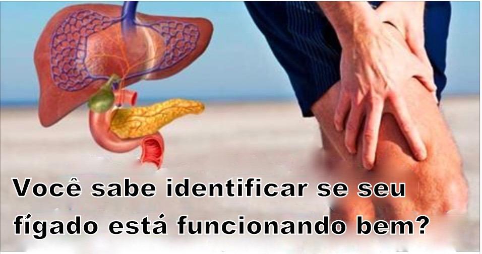 figado_-_novo_0
